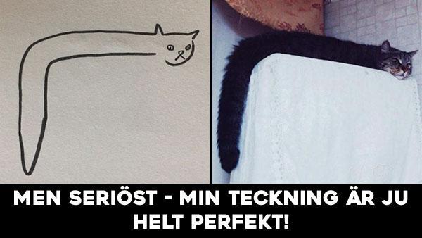 När din bildlärare säger att du inte kan rita katter - men dina teckningar är ju helt realistiska