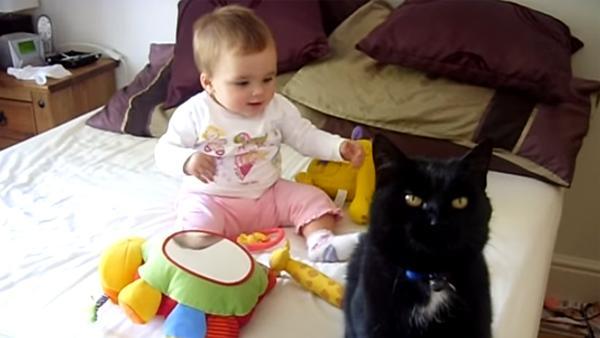 Hon lät sin lilla bebis och katt att hälsa på varandra - det som hände då hade ingen förväntat sig