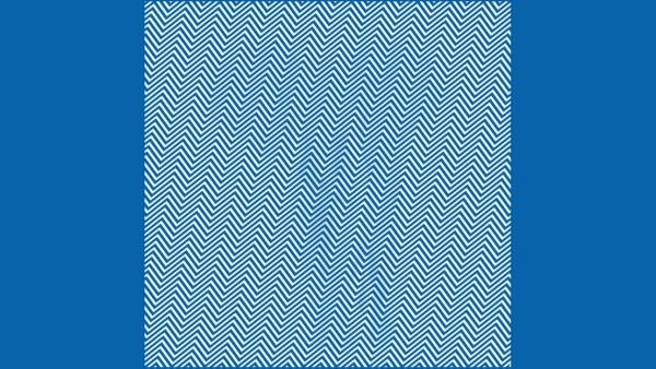 Kluringen: Kan du hitta det dolda djuret i denna bild inom 20 sekunder?