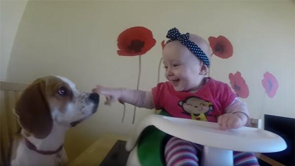 När de låter sin bebis sitta ensam med hunden händer det något helt fantastiskt