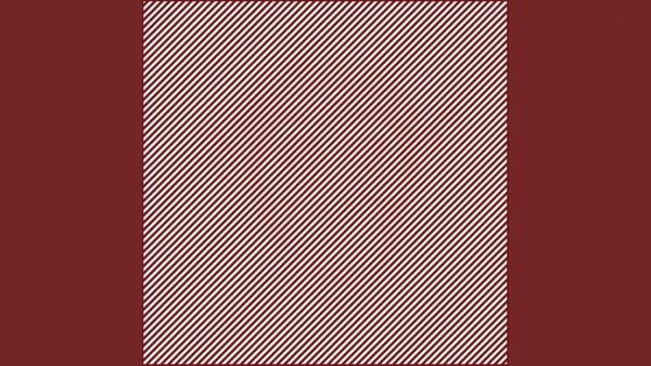 Kluringen: Kan du hitta det dolda djuret i denna bild inom 10 sekunder?
