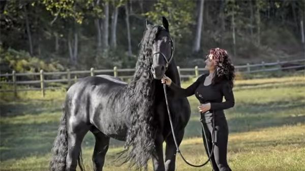 Han är utsedd till världens vackraste häst - när du ser klippet förstår du nog varför